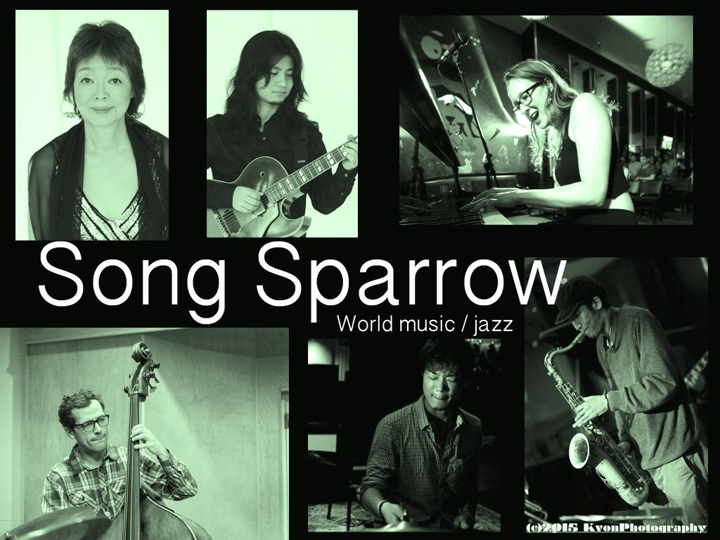 song sparrow2.jpg